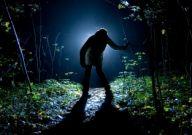 Oare Bigfoot si Yeti traiesc cu adevarat?
