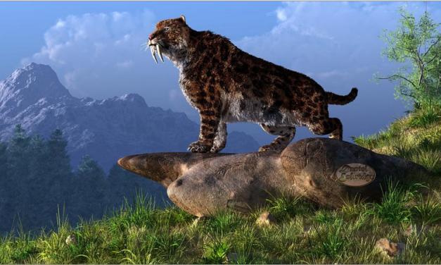 Tigrul cu dinti sabie – smilodonul