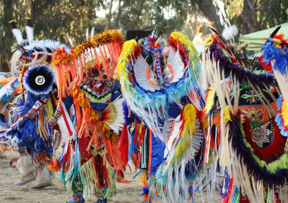Dansul indienilor nativ-americani
