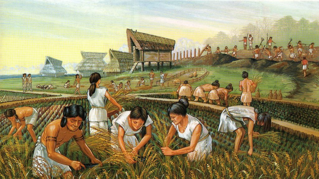 Agricultura in China