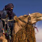 Berberii, stapanii desertului