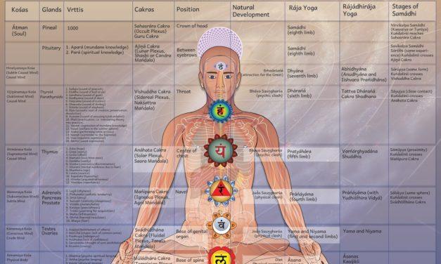 Ce este Yoga?