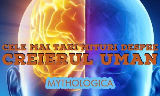 Mituri despre creier: mesaje subliminale, cum vedem culorile si cum influenteaza alcoolul creierul