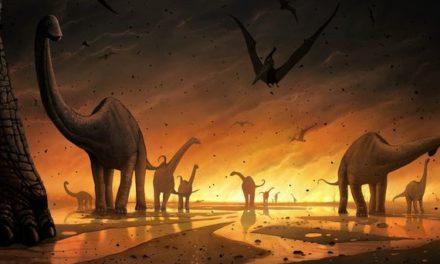 Noi ipoteze despre disparitia dinozaurilor