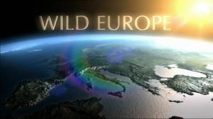Europa – imblanzirea naturii salbatice