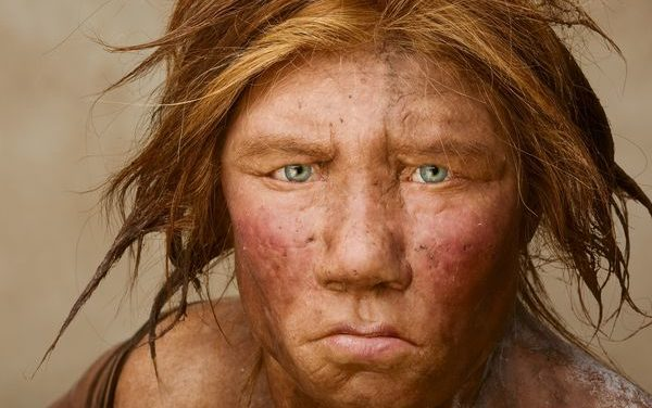 Intoarcerea neanderthalilor