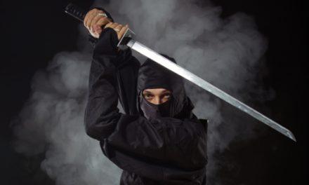 Tot ce stiti despre mitul ninja este gresit
