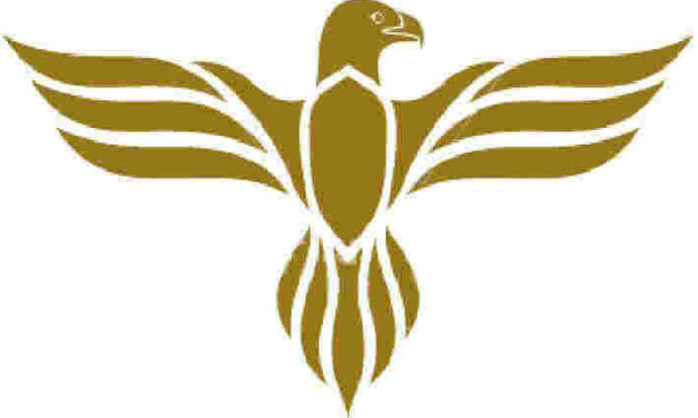 Vulturul – animal simbol